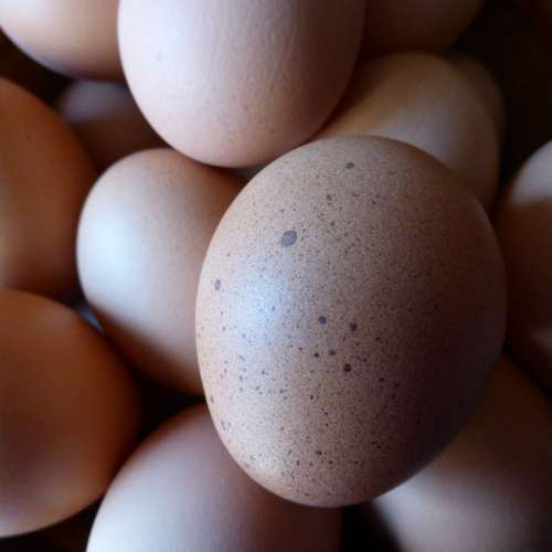 Egg Hen'S Egg Food Nutrition Chicken Product