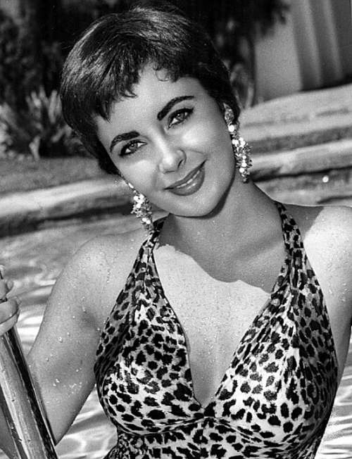 Elizabeth Taylor Actress Motion Pictures Movies