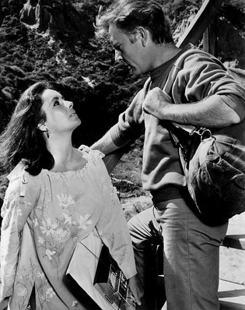 Elizabeth Taylor Richard Burton Actress Actor