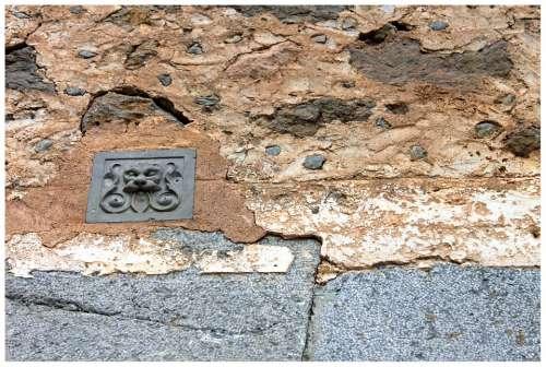 Emblem Lion Wall Animal Facade Figure Masonry