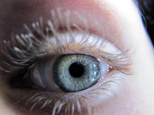 Eye Szupermakró Macro Iris Watch Eyelash Skin