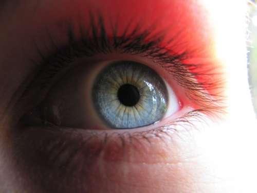Eye Blue Watch Blue Eye Macro Szupermakró