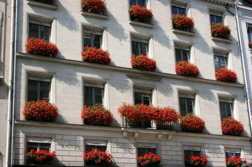Facade Building Planters Cartier Paris