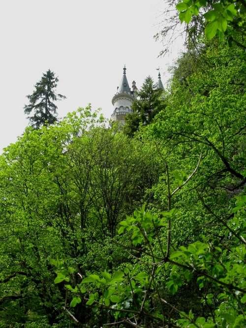 Fairy Castle Kristin Poellatschlucht Rock Spruce