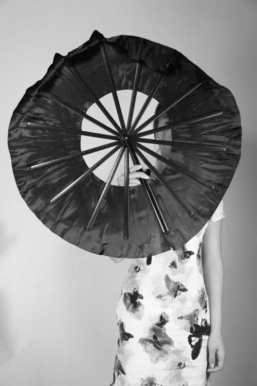 Fan Classical Cheongsam Beauty