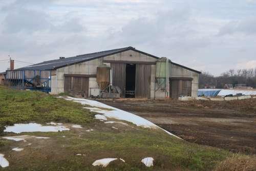 Farm Agriculture Barn Stable
