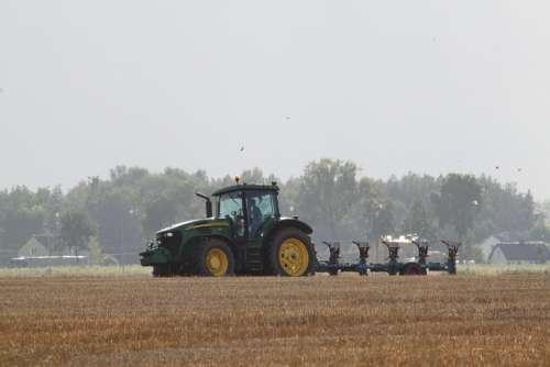 Farmer Village Field View Field Crops Summer