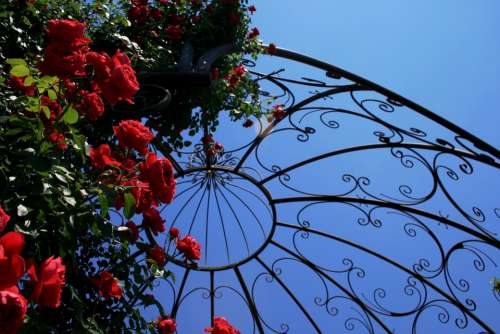Feature Construction Garden Metal Ornate Cage