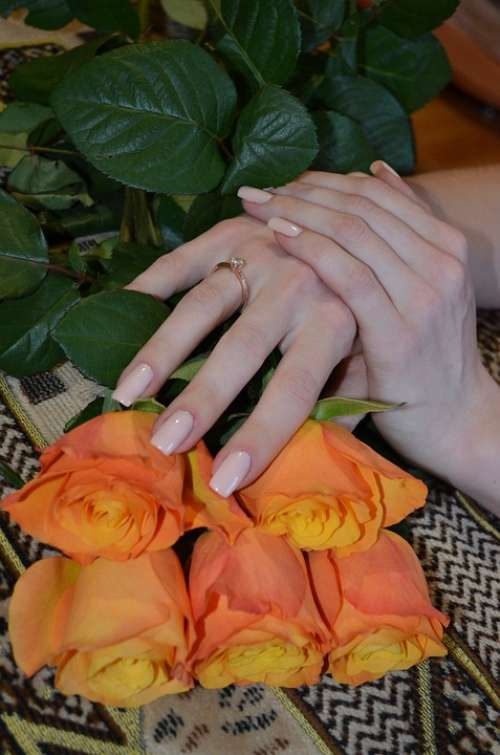 Female Hands Ring Engagement Flowers