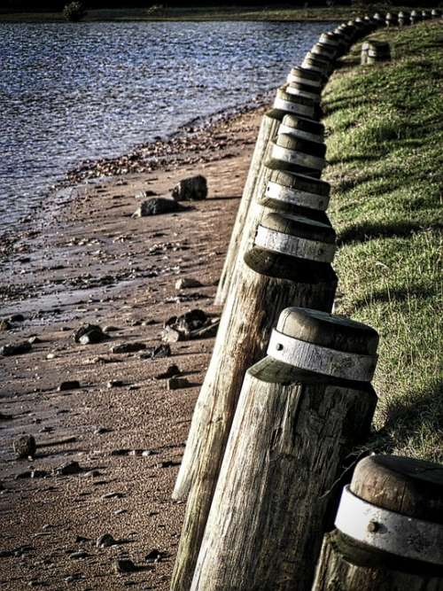 Fence Posts Perspective Wooden Pattern Distance