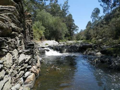 Ferreira River Mills Butt Valongo