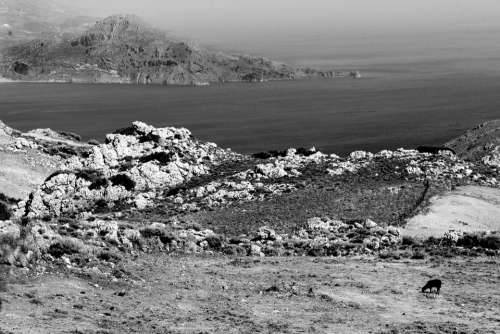 Field Seaside Crete Black And White