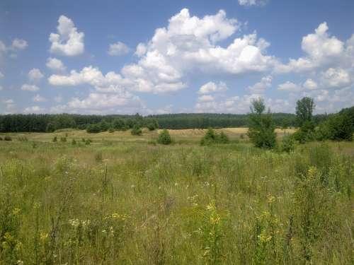 Field Village Agriculture Summer Poland Landscape