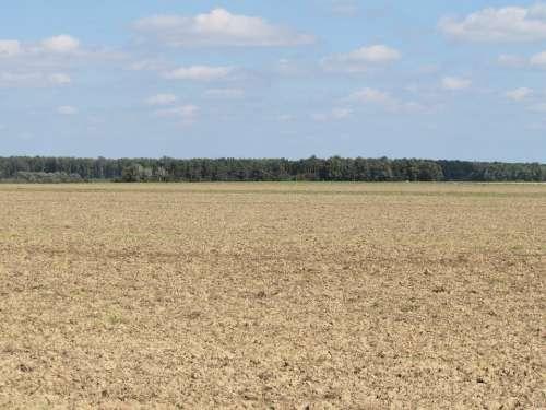 Field Landscape Arable Nature