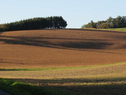 Fields Landscape Arable