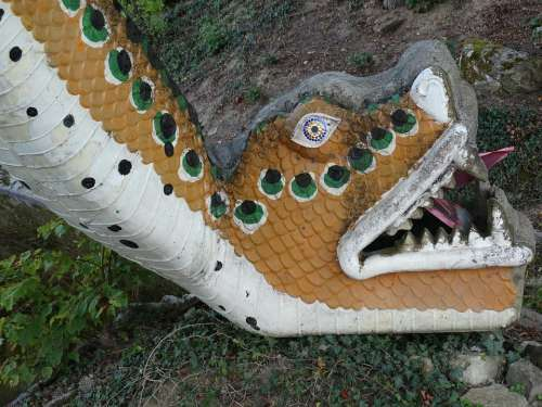 Figure Snake Snakehead Reptile Animal