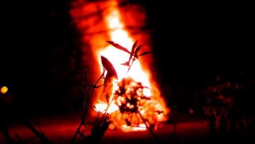 Fire Radio Flame Burn Wood Fire Brand Embers