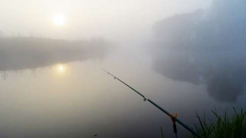 Fish Fishing Fishing Rod River Landscape Lake