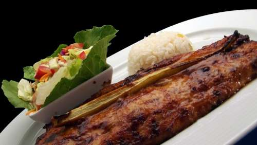 Fish Grilled Restaurant Lunch Delicious Cuisine