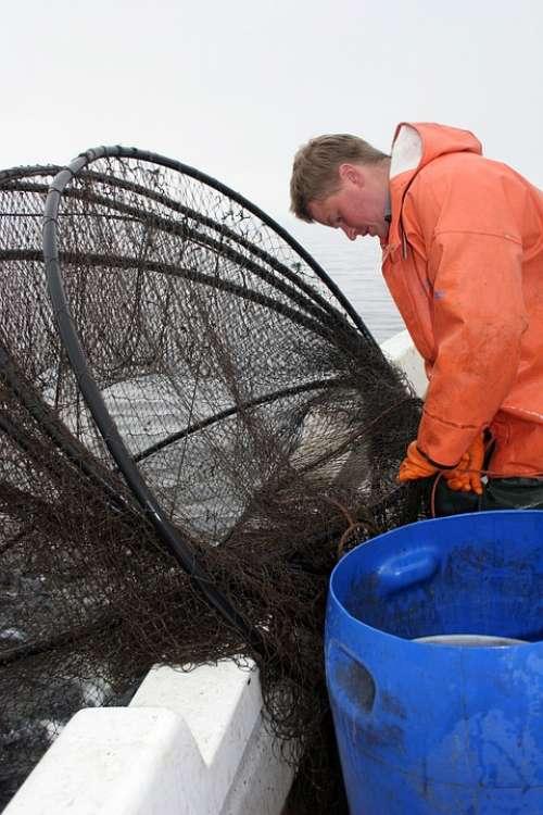 Fishermen Dis Fishing Crayfish