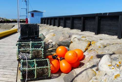 Fishing Lobster Boxes Fisherman Orange Green Port