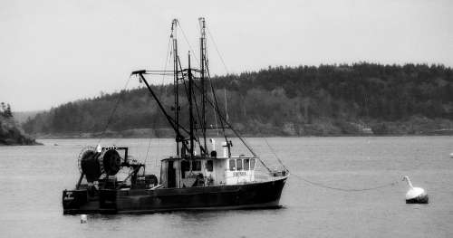 Fishing Trawler Boat Pacific Black And White Ocean