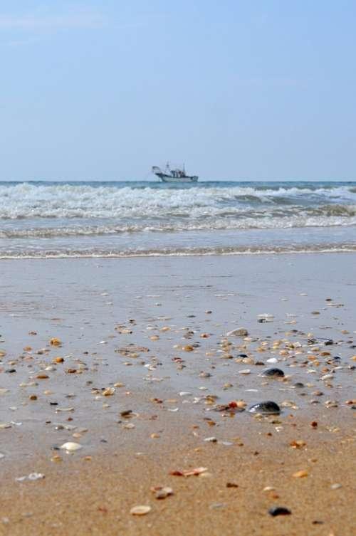 Fishing Boat Shells Sea The Antilla Lepe Huelva