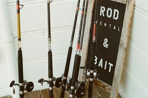 Fishing Rods Rods Fishing Hobby Leisure Fisherman