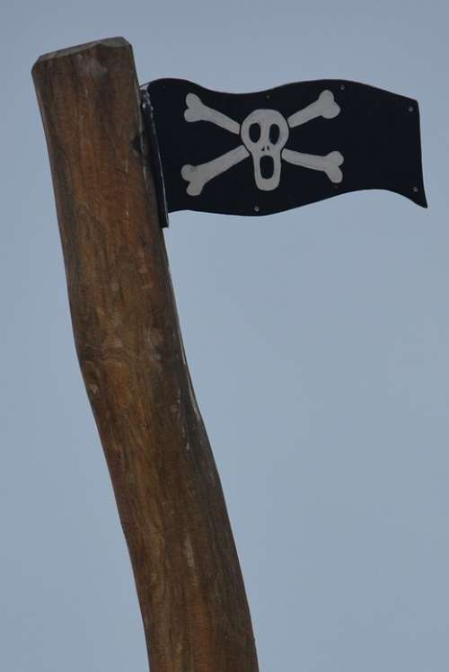 Flag Pirate Skull