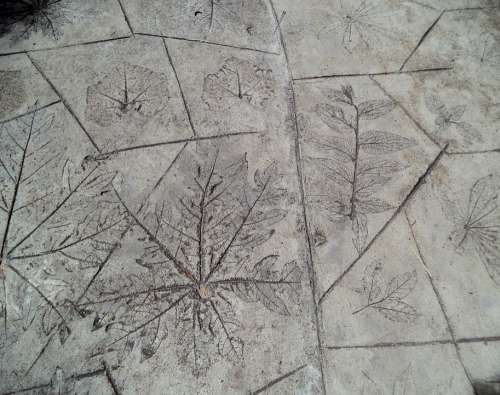 Floor Leaves Flooring Structure
