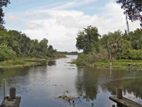 Florida Water Way Lake Water Nature Scenery