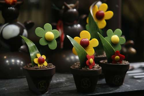 Flower Sweet Delicious Style Pot Chocolate