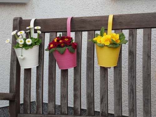 Flowerpot Potted Plant Plant Pot Flower Pot Flowers
