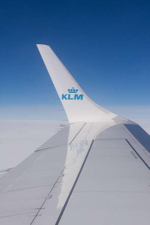 Flying Klm Flight Transport Airline Wing Signet