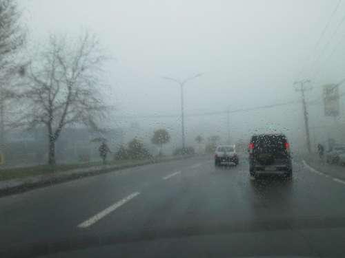 Fog Rent A Car Road