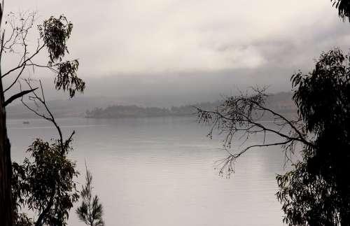 Fog Coast Bank Water Clouds Rain Lake