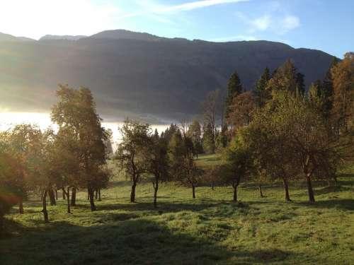 Fog Autumn Morning Mood Landscape