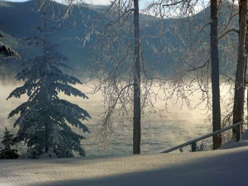 Foggy Winter Scenery Winter Dream Cold Snow