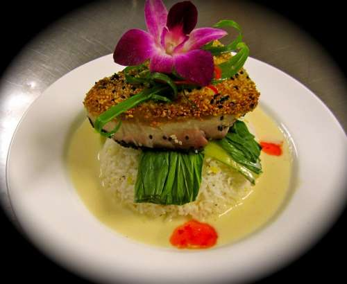Food Cuisine Dinner Sesame Tuna Delicious