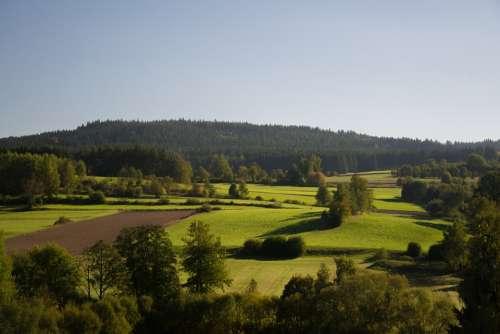 Forest Meadow Autumn Fields