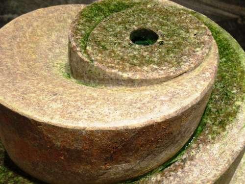 Fountain Indoor Fountain Stone Water Seaweed