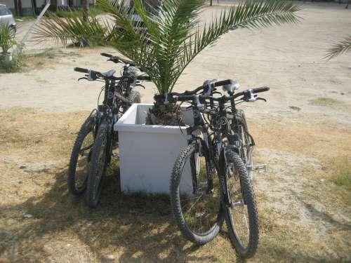 Fourka Greece Halkidiki Summer Mountain Bike Bike