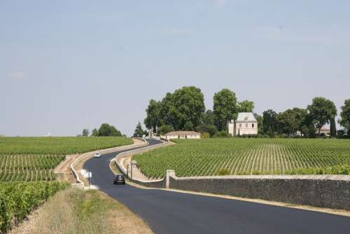 France Bordeaux Winery Vineyard Countryside