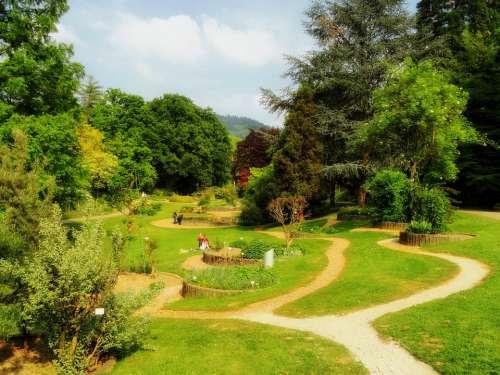 Freiburg Germany Botanical Garden Landscape Scenic