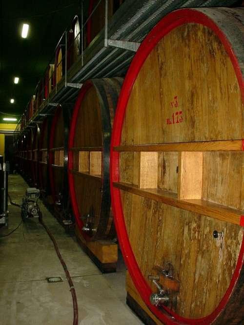 Frescobaldi Nipozzano Wine Cellar Wine Barrels