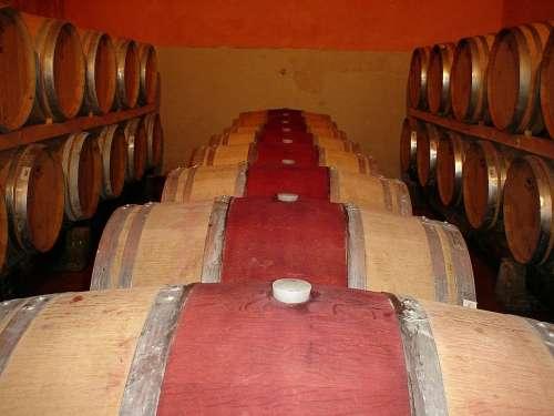 Frescobaldi Castelgiocondo Wine Cellar Wine Barrels