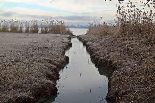 Frost Hoarfrost Entwạ̈Sserungskanal Channel Meadow