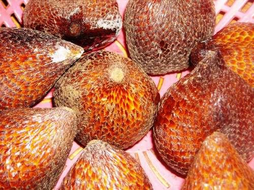 Fruit Salak Skin Scales Brown