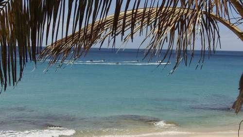 Fuerteventura Canary Islands Summer Beach