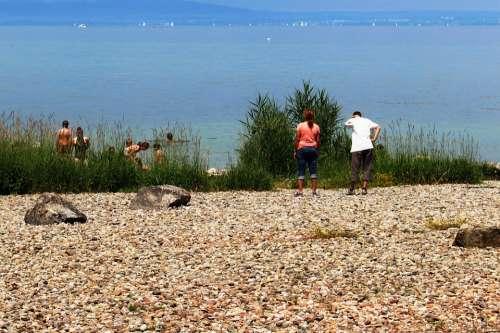 Fun Lake Swim Children Woman Man Bank Stones